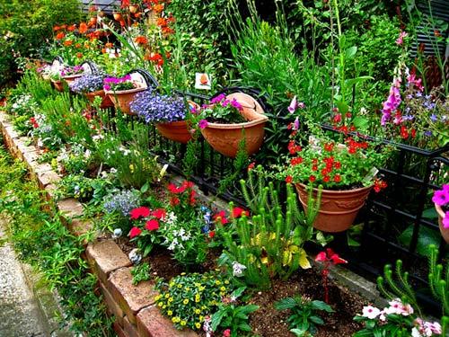 Как украсить цветами свой двор